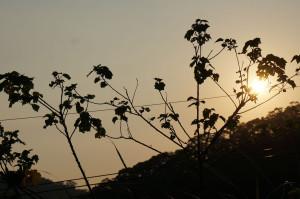 雲想家夕陽